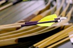 Houten boogschietenpijlen met plastiek nocks en veren Royalty-vrije Stock Foto