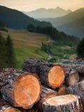Houten boomstammen en bergen Stock Foto's