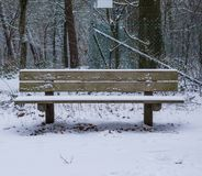 Houten bosdiebank in een laag van sneeuw, het hout in wintertijd, koude en sneeuwweer wordt behandeld stock afbeelding