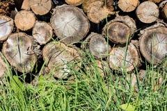 Houten brandhout op het gras stock afbeelding