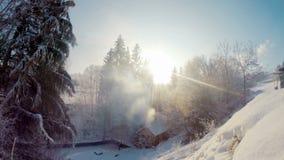 Houten breng in het de winterhout onder stock footage