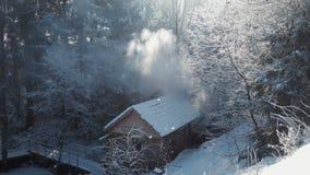 Houten breng in het de winterhout onder stock videobeelden