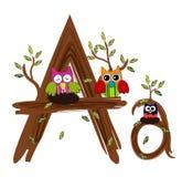 Houten Brief Owl Vector Stock Afbeelding