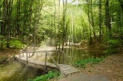 houten brug Stock Fotografie