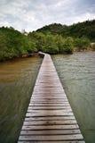 Houten brug aan mangroveeiland Royalty-vrije Stock Foto's