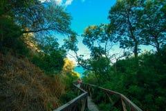 Houten brug-afdaling in een bergpark op de manier aan het strand op zee royalty-vrije stock afbeelding