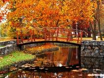 Houten brug bij het park Royalty-vrije Stock Afbeeldingen