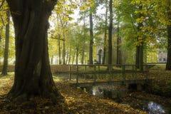Houten brug in de herfst Royalty-vrije Stock Afbeelding