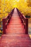 houten brug & de herfstbos Royalty-vrije Stock Foto