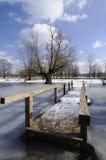 Houten brug in de vloed Stock Fotografie