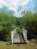Houten brug die tot het meer leiden Landelijke scène Royalty-vrije Stock Afbeelding