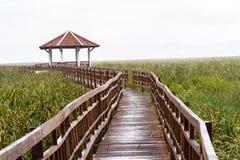 Houten brug en paviljoenmeer op daling die in Sam Roi Yot regenen Stock Fotografie