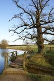 Houten brug in Engelse landschapstuin Stock Foto