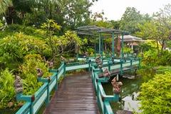 Houten brug in groen park Stock Foto