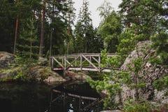 Houten brug in het bos stock afbeeldingen