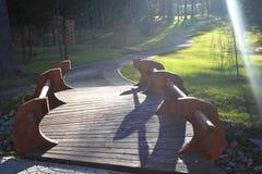Houten brug in het bos Stock Fotografie
