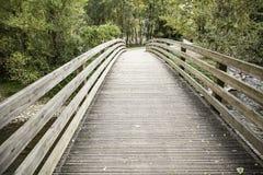Houten brug in het bos Royalty-vrije Stock Foto's