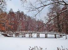 Houten brug in het bos van de winter Royalty-vrije Stock Foto