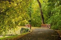 Houten brug in het de herfstbos Royalty-vrije Stock Fotografie