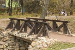 Houten brug in het park Stock Afbeelding