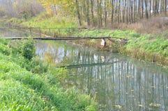 Houten brug op rivier Royalty-vrije Stock Fotografie