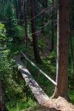 Houten brug over de stroom dichtbij het dorp van Sloboda in het gebied van Sverdlovsk royalty-vrije stock foto's