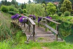 Houten brug over een vijver in een park, aardachtergrond stock foto's
