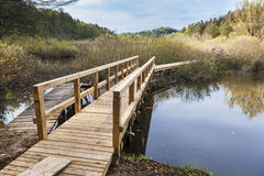 Houten brug over het meer stock foto