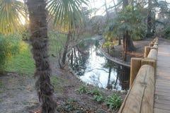 Houten brug over rivier met zonsonderganglicht royalty-vrije stock afbeeldingen