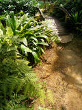 Houten brug in tuin Stock Foto's