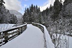 Houten brugbenadering die met sneeuw wordt behandeld Royalty-vrije Stock Foto's