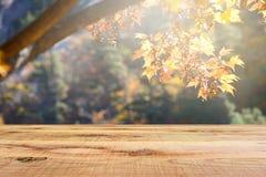 Houten bureau en onduidelijk beeld de herfst bosachtergrond Stock Fotografie