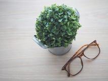 Houten bureaulijst met moderne oogglazen en kleine boom op flowe Royalty-vrije Stock Afbeelding