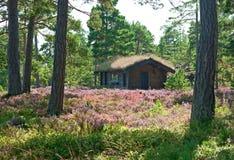 Houten cabine op een wildflowerweide Stock Afbeelding