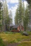Houten cabines in bos stock afbeelding
