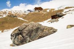 Houten Chalet in een sneeuw de winterdag stock foto's