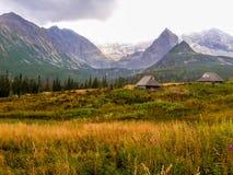 Houten chalets in Hoge Tatras Stock Foto