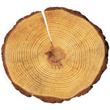 Houten cirkel Stock Afbeelding
