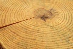 Houten cirkel met een spleetbesnoeiing stock afbeelding