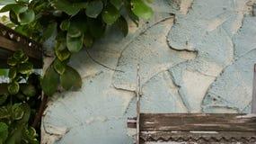Houten Dakpatroon met Schil Witte Verf op Ruwe Geschilderde Te royalty-vrije stock fotografie