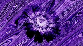 Houten de textuurbehang van sunmica bloemen medullair stralen stock foto's