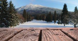 Houten dek en een sneeuwgebied 4k stock video