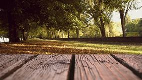 Houten dek met een mening van parkbomen stock videobeelden