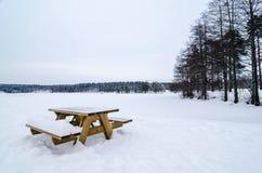 Houten die bank en lijst van sneeuw in een sneeuw boslandschap wordt behandeld Bevroren meer Stock Fotografie