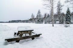 Houten die bank en lijst van sneeuw in een sneeuw boslandschapspanorama wordt behandeld Stock Afbeelding