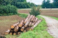 Houten die boomstammen op de wandelingssleep worden gestapeld Royalty-vrije Stock Foto's