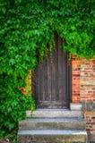 Houten die deuren in bakstenen muur met groene installatiebladeren wordt behandeld stock foto