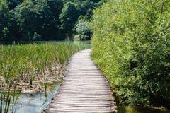 Houten die gang met water en bomen in de Nationale Meren van Parkplitvice in Kroatië wordt omringd stock fotografie