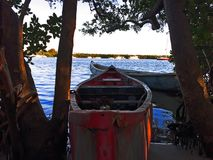 Houten die het roeien boot in de struiken op de kust wordt vastgelegd royalty-vrije stock fotografie