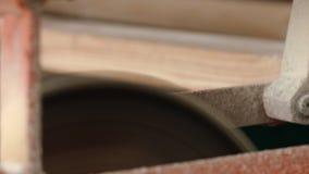 Houten die staven met cirkelzaag op geautomatiseerde productielijn bij zaagmolen worden gezaagd stock video